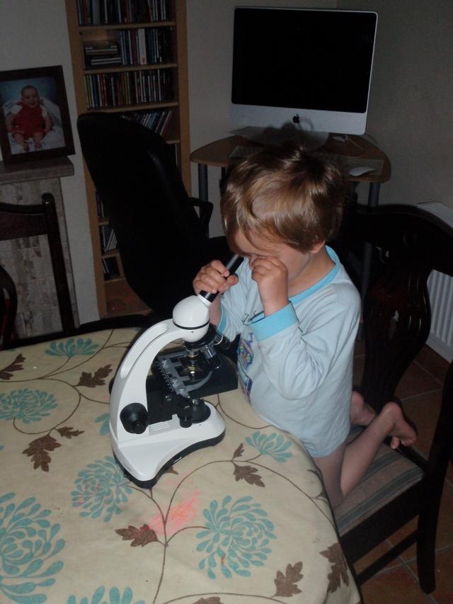 Frank w microscope w slide