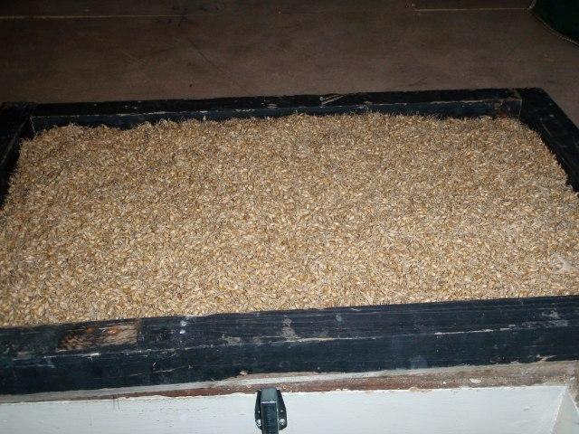 malt in drying frame