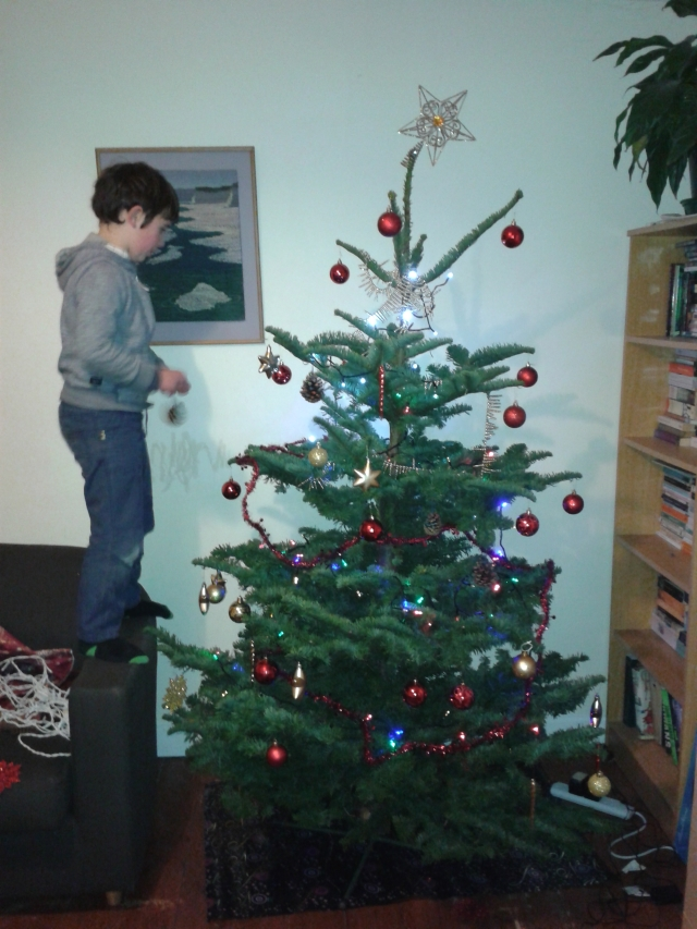 Hugh and Pepper decorating the tree