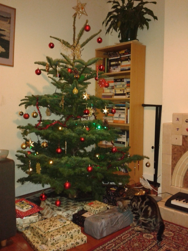 Tree and presents. Pepper is interested. I never did fix the wonky star.